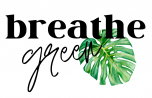 Breathe Green Plants and Gifts